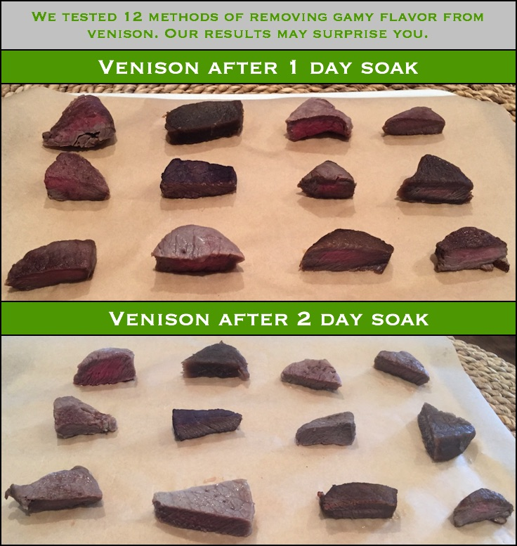 You may have heard of many methods to remove the gamy flavor from venison. Well, we tested 12 of them to see what worked... and what didn't.